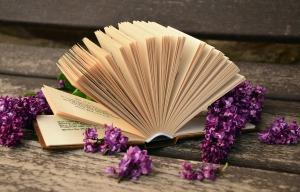book-760021_1280